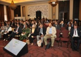 The ARF 2017 in Morocco to focus on Africa's renewable energy development