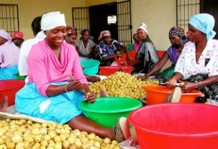 Africa Women Trade