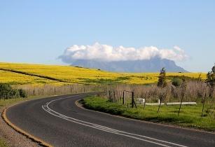 Africa road 14
