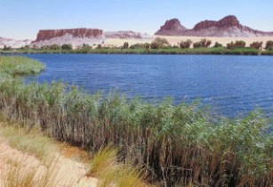 UNESCO commits to safeguarding Lake Chad