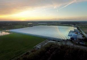 Rolls royce greenhouse Belgium