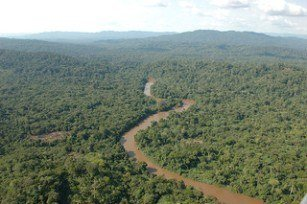 Congo basin UN 7.3mn project