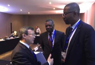 Wang Shouwen Vice Minister of Commerce China DGChief Negotiator of Nigerian Office for Trade Negoti