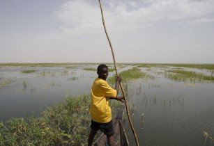 niger IUCNweb flickr
